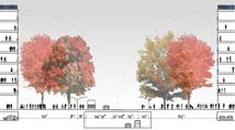 Zoka Zola, Rogers Park Urban Design, section of Sheridan Road - final stage